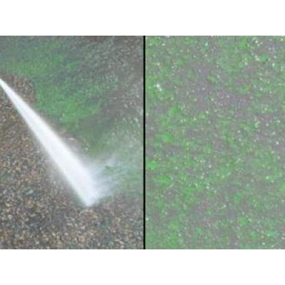 Image for BSSP Eco-tard Liquid TF